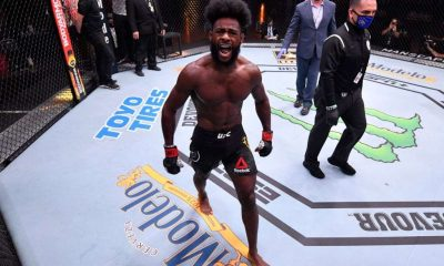 Aljamain Sterling celebrates his amazing victory over Sandhagen.